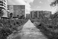 33-Poggiofranco-13bnweb